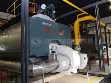 15 tph WNS condensing gas fired steam boiler in China